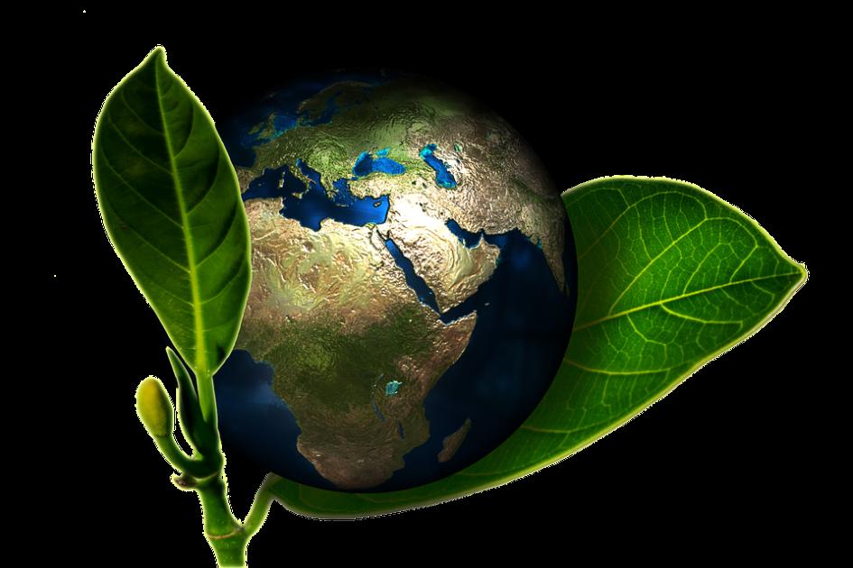 Nuevo proyecto por conseguir una economía más limpia y sostenible