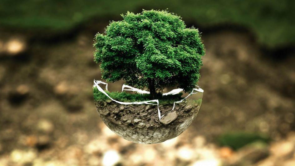 Megadyne continúa su compromiso de proteger el medio ambiente